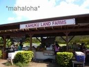 Kahukulandfarms4