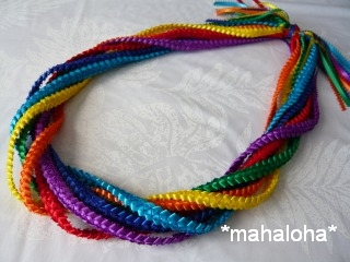 Rainbowbraid320