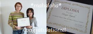 Diplomamizuho