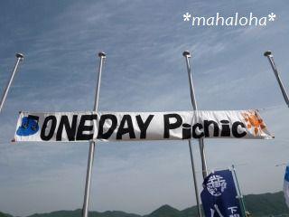 Oneday2011