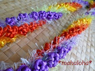 Rainbowrose1