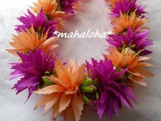 Chrysanthemumc2