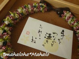 Mahalohamahalo1212t1