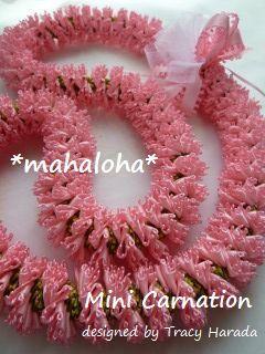 Minicarnation1_2
